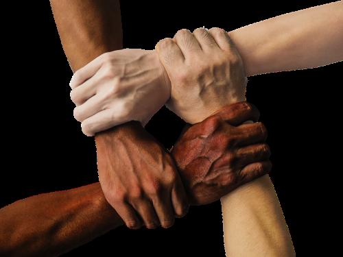 Voluntarios - associação santa cecília